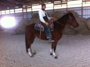 This mare is going to be the best overall trail mare out there. If you want style, pizazz, gait, intelligence and you want it ALL in a horse that is your partner (friend) then come check her out. She will grow to 16 hands, I am sure!